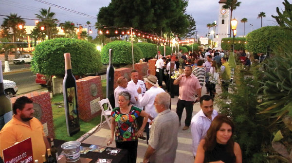Ensenada Wine Festivals