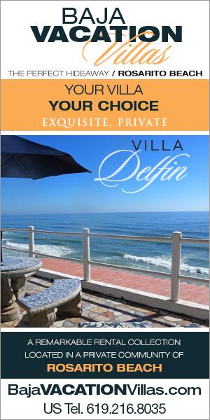 Villa-Delfin